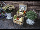 Vegetables and Flowers - Baden-Baden Germany-23